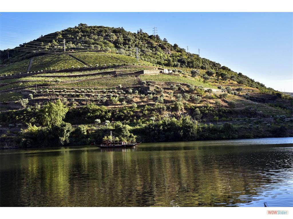 Douro - un fleuve tranquile en ete